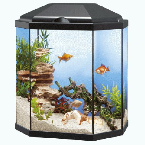 Aquarium ciano aqua 30 light for Acuarios modernos