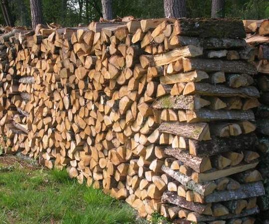 Bois de chauffage sec for Bois de chauffage trop sec