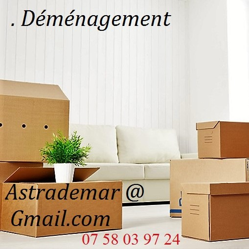 manutention aide au d m nagement montage meubles. Black Bedroom Furniture Sets. Home Design Ideas