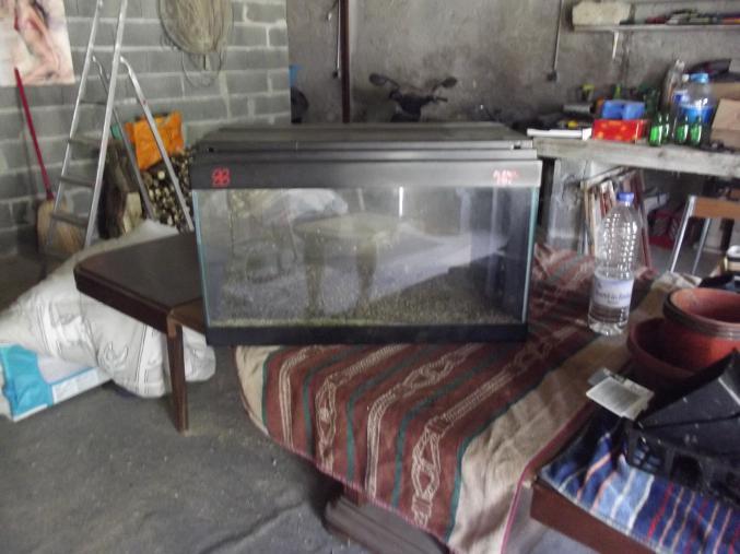 Aquarium accessoire for Accessoire aquarium