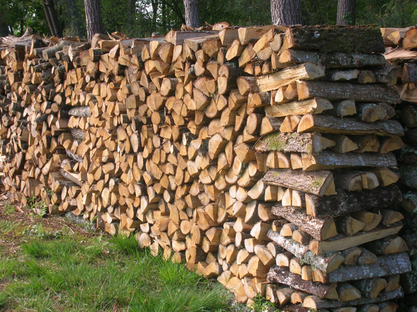 Merisier Bois De Chauffage : Vente de bois de chauffage