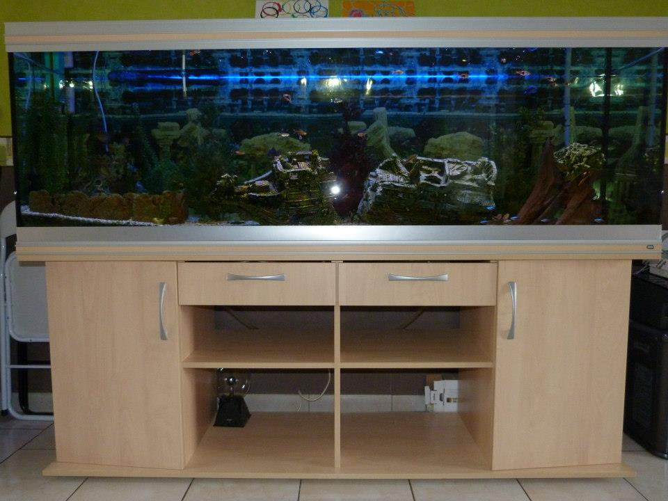 Meuble pour aquarium 600 l for Aquarium meuble tv